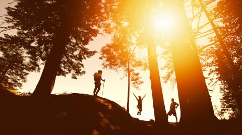 Three silhouettes hiking and jumping in the forrest with the sun shining through the trees