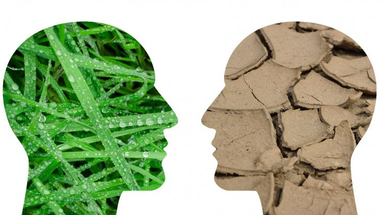 Two Cutouts of Faces facing each other. One is of Green Grass and one is Dry Earth